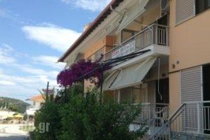Pansion Eleni_accommodation_in_Hotel_Macedonia_Halkidiki_Ammouliani