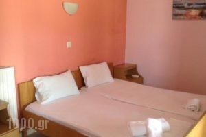Pansion Eleni_holidays_in_Hotel_Macedonia_Halkidiki_Ammouliani