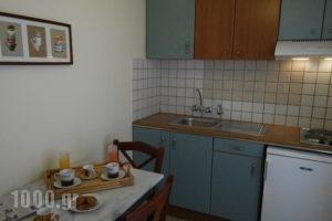Demestahas Apartments_best prices_in_Apartment_Peloponesse_Lakonia_Gythio