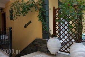 Tousis_lowest prices_in_Hotel_Epirus_Preveza_Parga