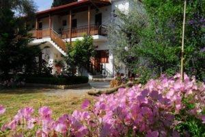 Vergonis Studios_holidays_in_Hotel_Thessaly_Magnesia_Trikeri