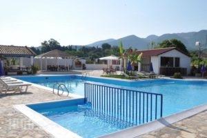 Tassos Apartments_lowest prices_in_Apartment_Ionian Islands_Corfu_Roda