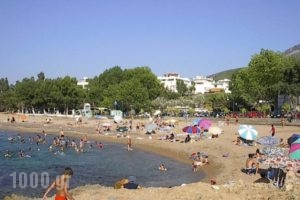 Terpsichore Apartments_holidays_in_Apartment_Thessaly_Magnesia_Pilio Area