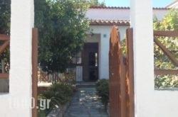 Amalia Studios in Skiathos Chora, Skiathos, Sporades Islands