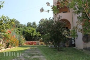Emily'S Apartments_best prices_in_Apartment_Ionian Islands_Corfu_Kassiopi