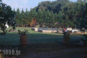 Villa Georgina B&B_travel_packages_in_Peloponesse_Ilia_Pyrgos