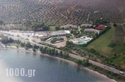 Levendi Hotel in  Kamena Vourla , Fthiotida, Central Greece