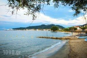Villa Teresa_holidays_in_Villa_Aegean Islands_Thasos_Thasos Chora