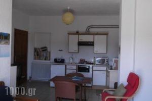 Villa Christina Apartments_accommodation_in_Villa_Thessaly_Magnesia_Almiros