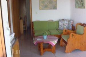 Studios Dina_holidays_in_Hotel_Aegean Islands_Thasos_Thasos Chora