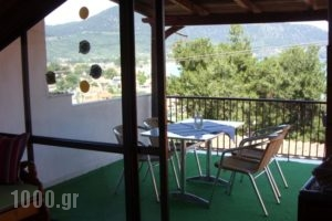 Studios Dina_lowest prices_in_Hotel_Aegean Islands_Thasos_Thasos Chora