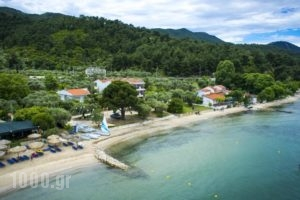 Villa Teresa_accommodation_in_Villa_Aegean Islands_Thasos_Thasos Chora