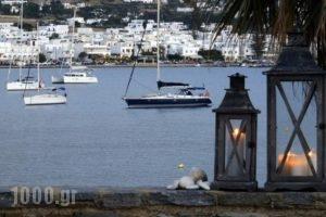 Parian Village_holidays_in_Hotel_Cyclades Islands_Paros_Paros Chora