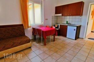 Monachus Monachus_best prices_in_Hotel_Crete_Chania_Fragokastello