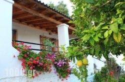 Ulisse Apartments in Palaeokastritsa, Corfu, Ionian Islands