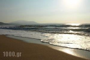 Dionysos_accommodation_in_Hotel_Macedonia_Thessaloniki_Thessaloniki City
