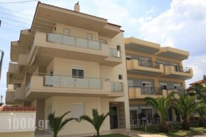 Vicky Rooms_best prices_in_Room_Macedonia_Halkidiki_Paralia Dionysou