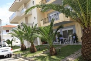 Vicky Rooms_travel_packages_in_Macedonia_Halkidiki_Paralia Dionysou