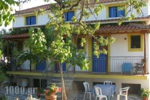 Alexandra Sofia_best deals_Hotel_Sporades Islands_Skopelos_Skopelos Chora