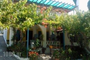 Alexandra Sofia_holidays_in_Hotel_Sporades Islands_Skopelos_Skopelos Chora