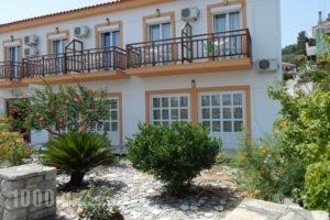 Dina Pension_accommodation_in_Hotel_Aegean Islands_Samos_Samosst Areas