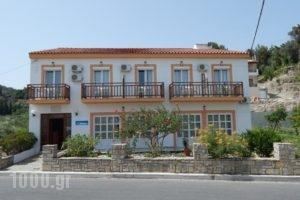 Dina Pension_holidays_in_Hotel_Aegean Islands_Samos_Samosst Areas