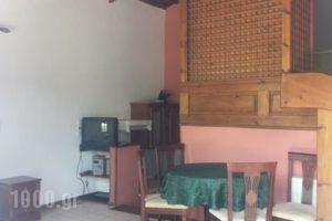 Liokambi Village Bungalows_lowest prices_in_Hotel_Aegean Islands_Lesvos_Mythimna (Molyvos)