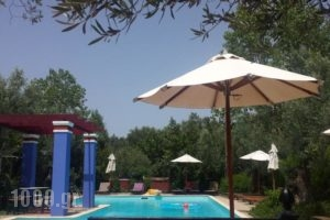 Liokambi Village Bungalows_best prices_in_Hotel_Aegean Islands_Lesvos_Mythimna (Molyvos)
