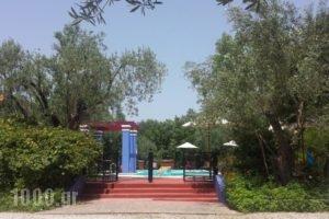 Liokambi Village Bungalows_best deals_Hotel_Aegean Islands_Lesvos_Mythimna (Molyvos)