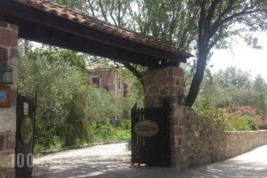 Liokambi Village Bungalows_holidays_in_Hotel_Aegean Islands_Lesvos_Mythimna (Molyvos)