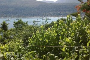 Gialos_best prices_in_Hotel_Ionian Islands_Lefkada_Lefkada's t Areas