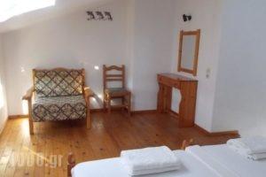 Pleiades Studios And Maisonettes_holidays_in_Hotel_Sporades Islands_Skopelos_Skopelos Chora