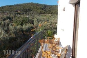 Pleiades Studios And Maisonettes_travel_packages_in_Sporades Islands_Skopelos_Skopelos Chora