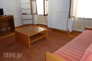 Lilys Apartments_best deals_Apartment_Crete_Rethymnon_Rethymnon City