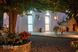 Dimitra Apartments_best prices_in_Apartment_Peloponesse_Argolida_Kandia