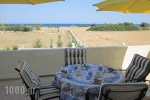 Sunshine Villa_accommodation_in_Villa_Dodekanessos Islands_Rhodes_Rhodes Areas