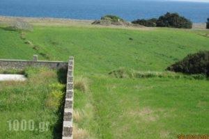 Sunshine Villa_lowest prices_in_Villa_Dodekanessos Islands_Rhodes_Rhodes Areas