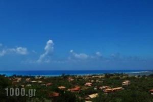 Lefkothea Apartments_best deals_Apartment_Ionian Islands_Lefkada_Vasiliki