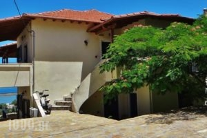 Lefkothea Apartments_accommodation_in_Apartment_Ionian Islands_Lefkada_Vasiliki