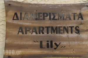 Lilys Apartments_lowest prices_in_Apartment_Crete_Rethymnon_Rethymnon City