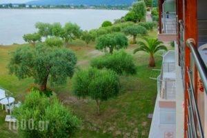 Livari Studios_lowest prices_in_Hotel_Macedonia_Halkidiki_Chalkidiki Area
