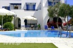 Ikaros Studios & Apartments in Naxos Chora, Naxos, Cyclades Islands