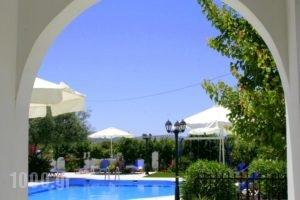 Ikaros Studios & Apartments_best prices_in_Apartment_Cyclades Islands_Naxos_Naxos chora