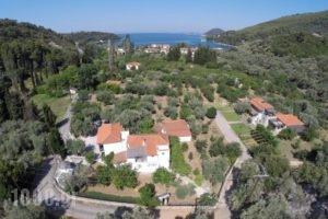Katerina_best prices_in_Hotel_Sporades Islands_Skopelos_Skopelos Chora