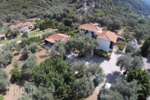 Katerina_travel_packages_in_Sporades Islands_Skopelos_Skopelos Chora