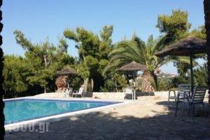 Villa Gorgona_best prices_in_Villa_Piraeus Islands - Trizonia_Spetses_Spetses Chora