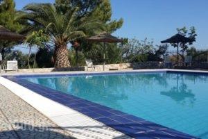 Villa Gorgona_accommodation_in_Villa_Piraeus Islands - Trizonia_Spetses_Spetses Chora
