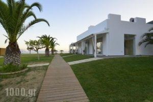 Hotel Odeon_lowest prices_in_Hotel_Ionian Islands_Lefkada_Vasiliki