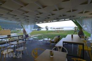 Hotel Odeon_best deals_Hotel_Ionian Islands_Lefkada_Vasiliki
