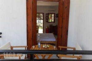 Pleiades Studios And Maisonettes_best prices_in_Hotel_Sporades Islands_Skopelos_Skopelos Chora